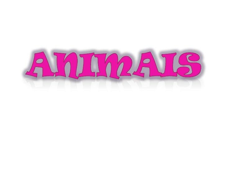 ANIMAIS<br />