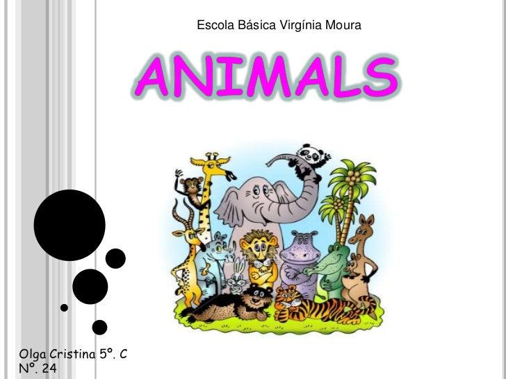 animals<br />Escola Básica Virgínia Moura<br />Olga Cristina 5º. CNº. 24<br />