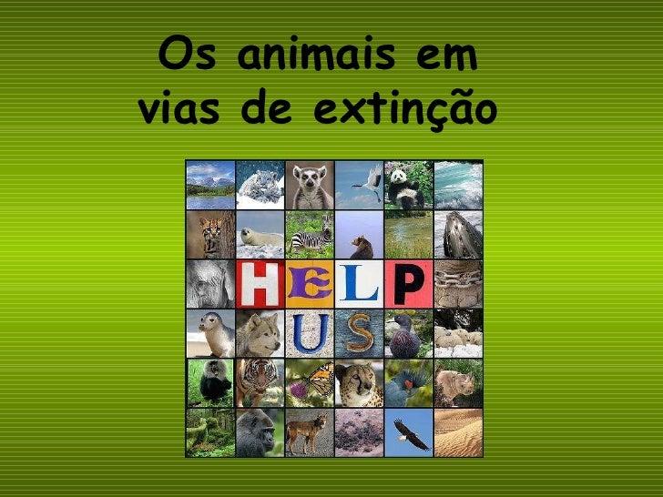 Os animais em vias de extinção