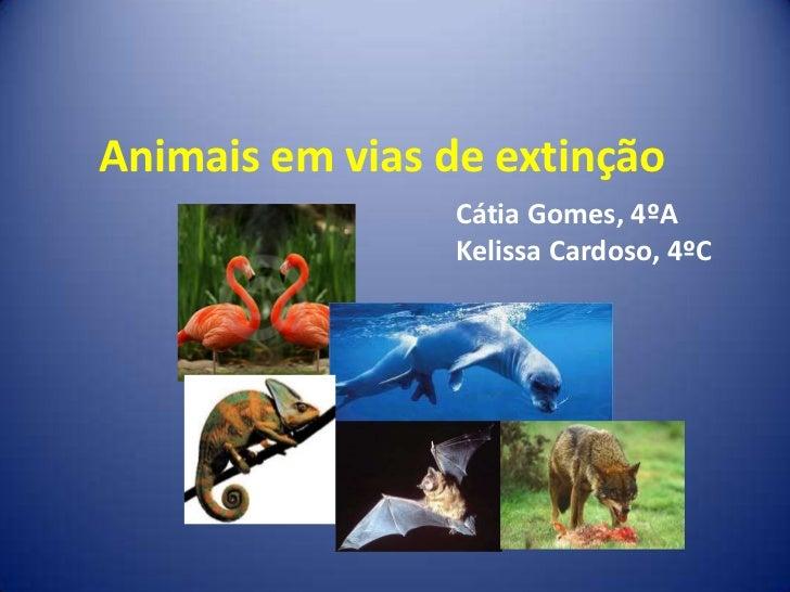 Animais em vias de extinção<br />Cátia Gomes, 4ºA<br />KelissaCardoso, 4ºC<br />