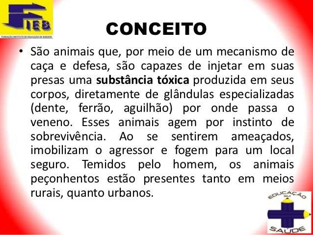 CONCEITO• São animais que, por meio de um mecanismo de  caça e defesa, são capazes de injetar em suas  presas uma substânc...
