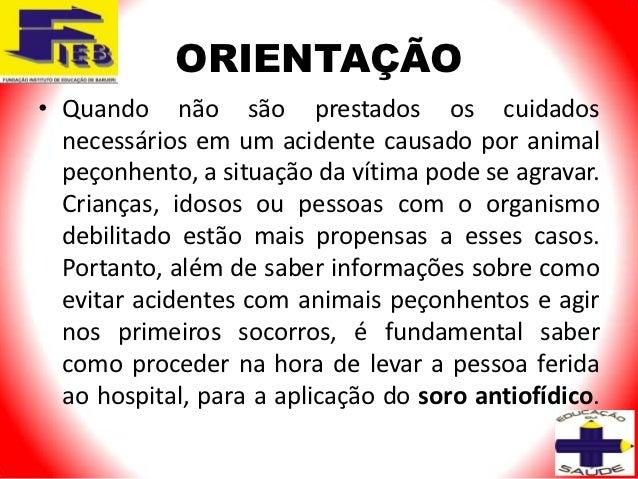 ORIENTAÇÃO• Quando não são prestados os cuidados  necessários em um acidente causado por animal  peçonhento, a situação da...