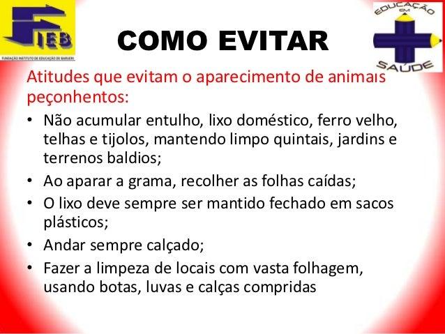 COMO EVITARAtitudes que evitam o aparecimento de animaispeçonhentos:• Não acumular entulho, lixo doméstico, ferro velho,  ...