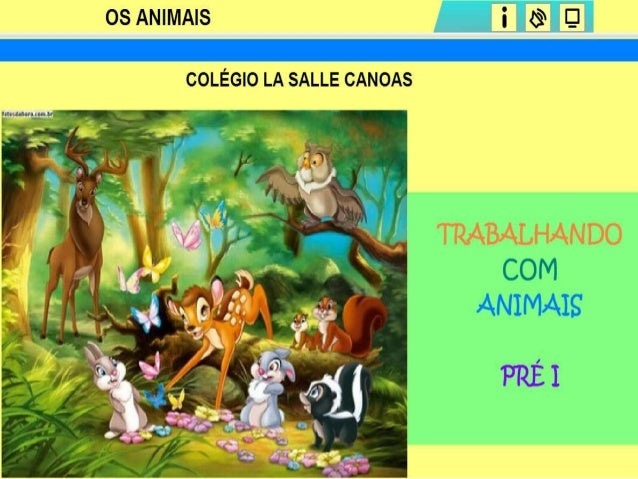 Animais ppt