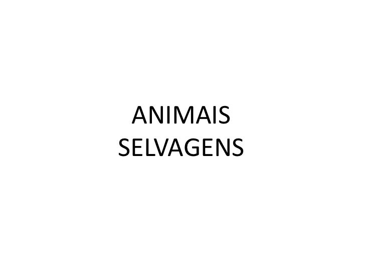 ANIMAISSELVAGENS
