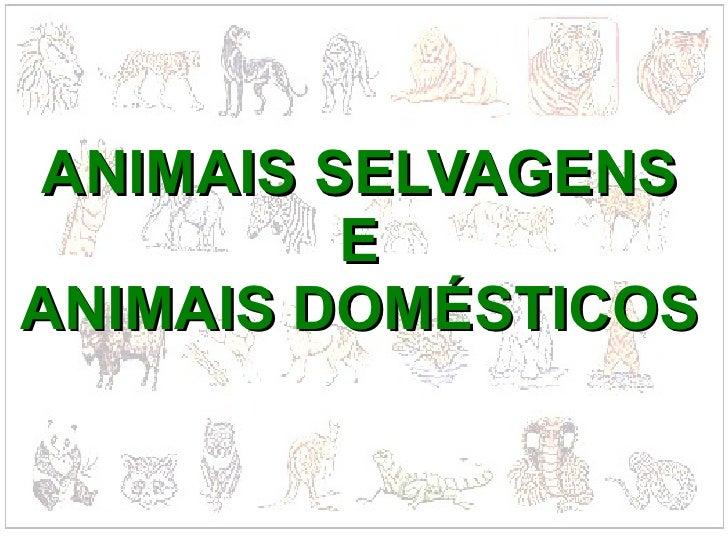 ANIMAIS SELVAGENS E ANIMAIS DOMÉSTICOS
