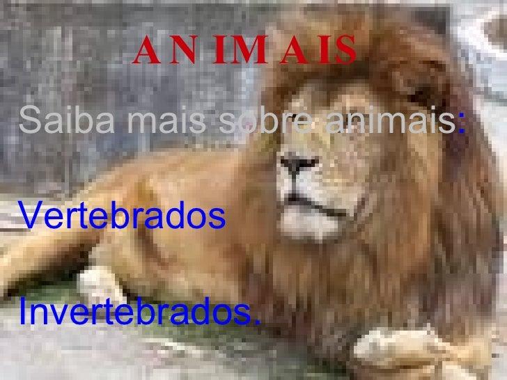 ANIMAIS Saiba mais sobre animais : Vertebrados Invertebrados.