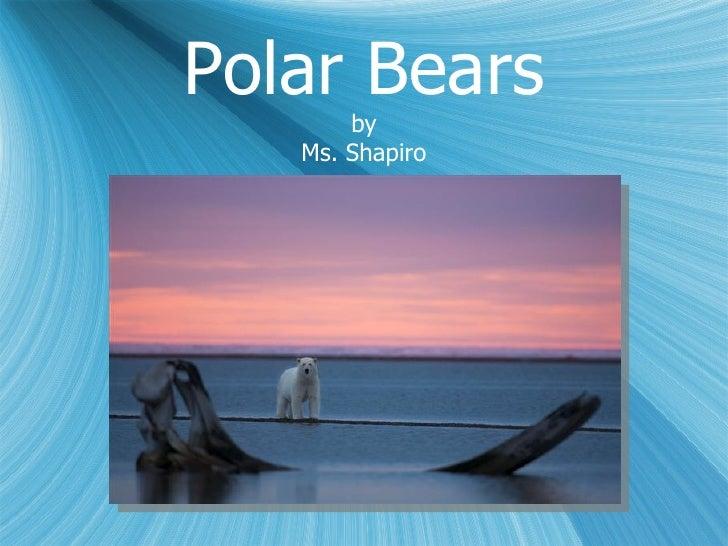 Polar Bears by Ms. Shapiro