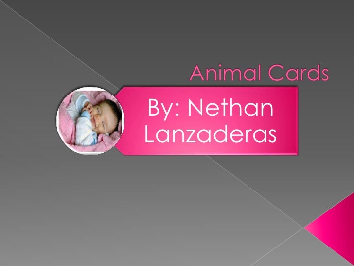 Animal Card Using MS Power Point