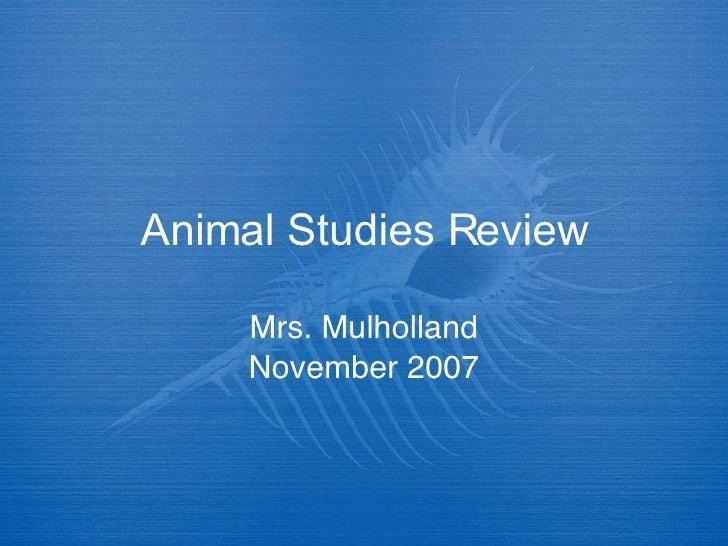 Animal Studies Review Game