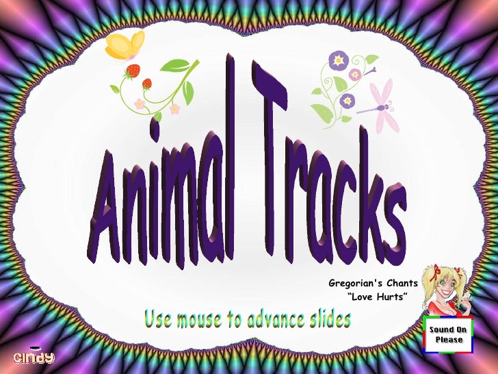 """Gregorian's Chants  """" Love Hurts"""" Use mouse to advance slides Animal Tracks"""