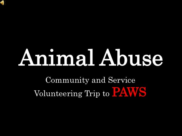 Animal Abuse<br />Community and Service Volunteering Trip to PAWS<br />