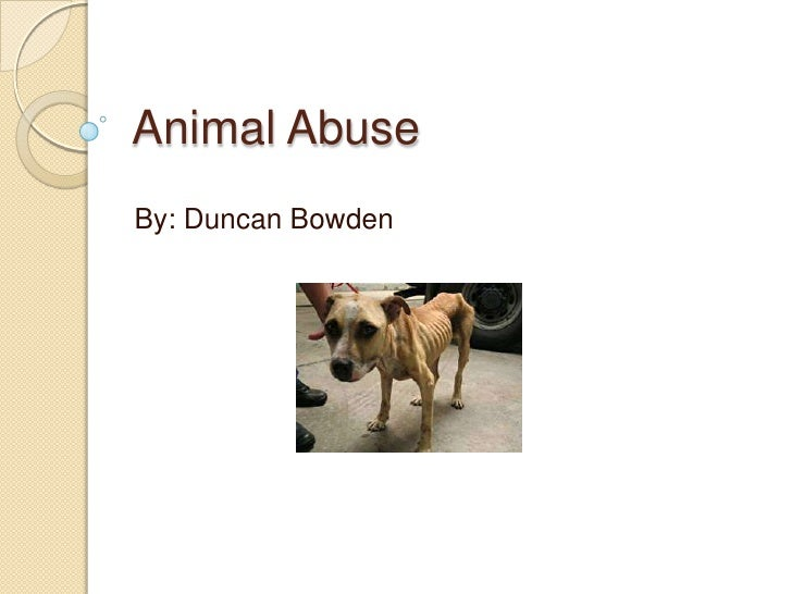 Animal Abuse Powerpoint