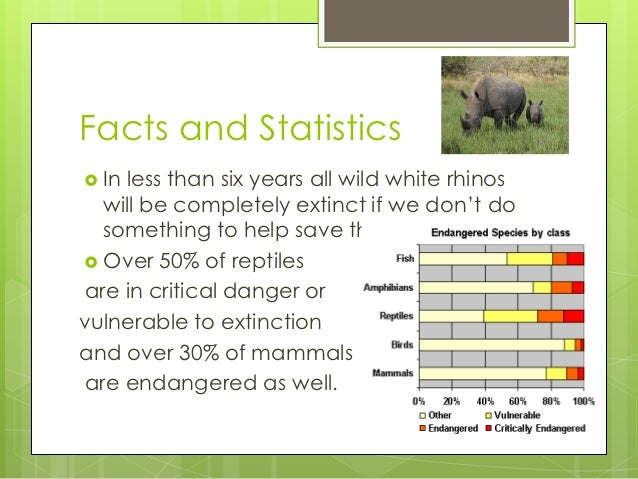 What are the statistics of Animal Cruelty?