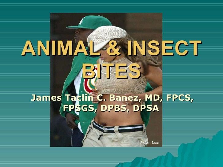 ANIMAL & INSECT BITES James Taclin C. Banez, MD, FPCS, FPSGS, DPBS, DPSA