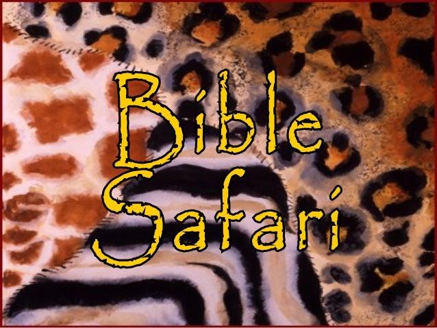 Animal Bible Safari