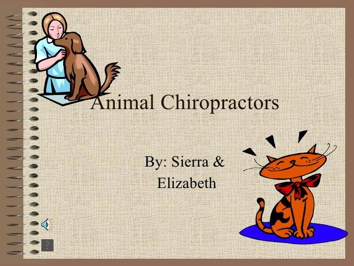 Animal Chiropractors