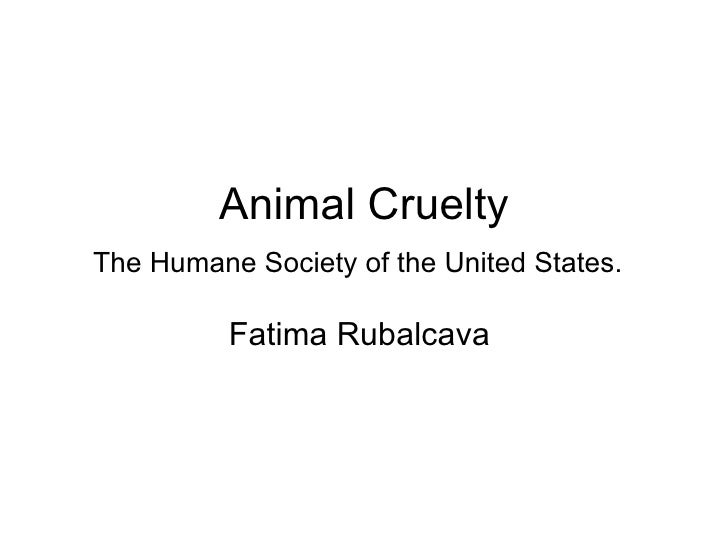 Animal Cruelty The Humane Society of the United States.   Fatima Rubalcava