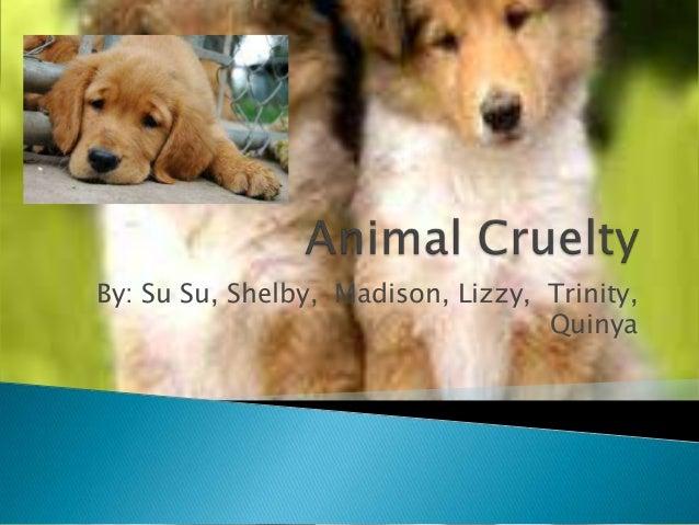 Animal Cruelty Powerpoint-Rm 21