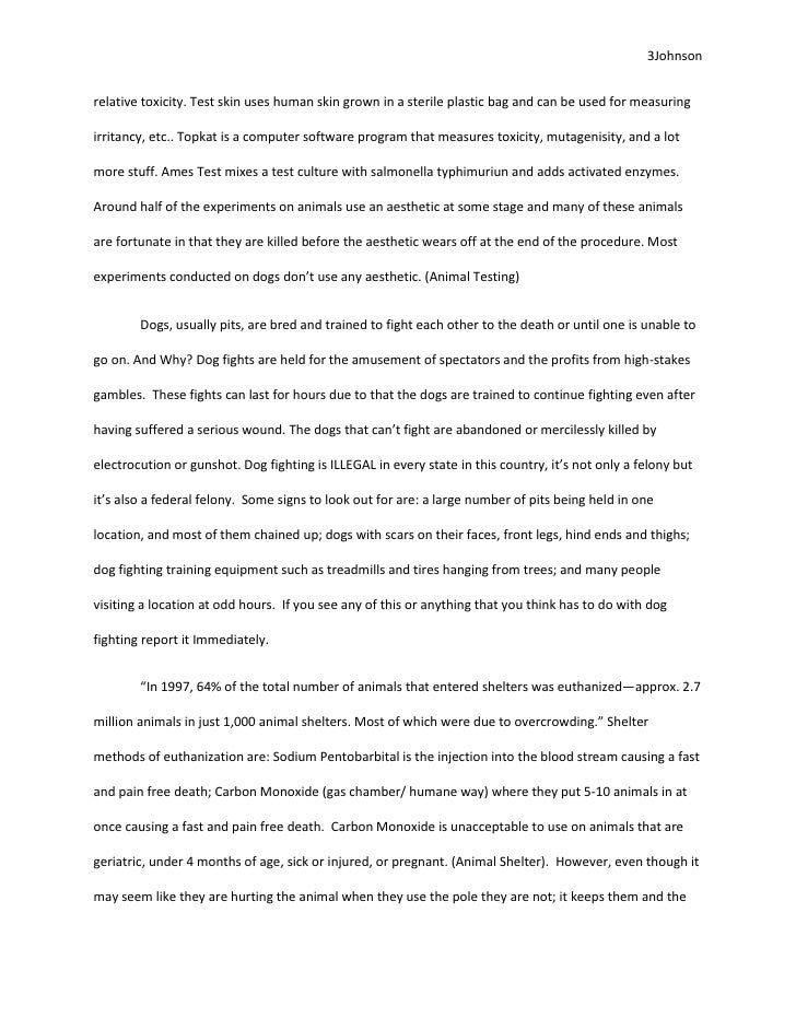 animal experimentation essays animal experimentation essays  essay about animal testinganimal abuse essays animal abuse essay persuasive essay about persuasive essay animal animal