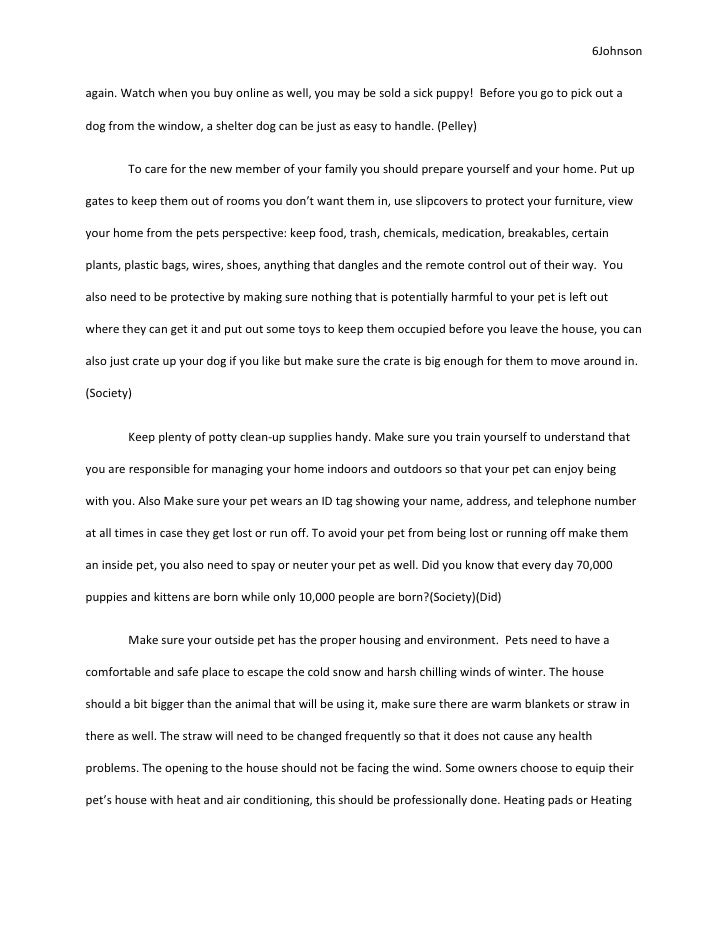 animal cruelty essay