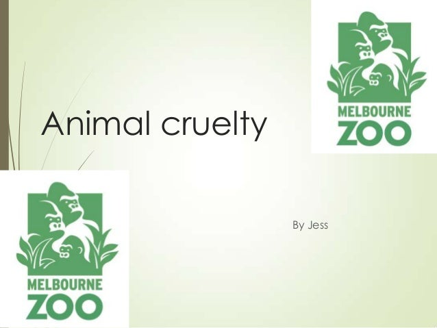 INSPIRED BY VISITING MELBOURNE ZOO!