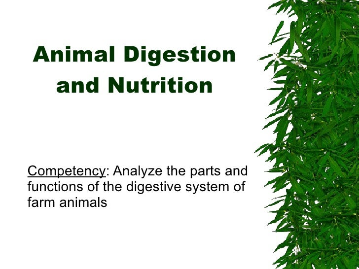 Animal Digestion and Nutrition Competency : Analyze the parts and functions of the digestive system of farm animals
