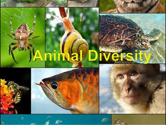    Extends far beyond humans and other    animals we may encounter                Figure 32.1