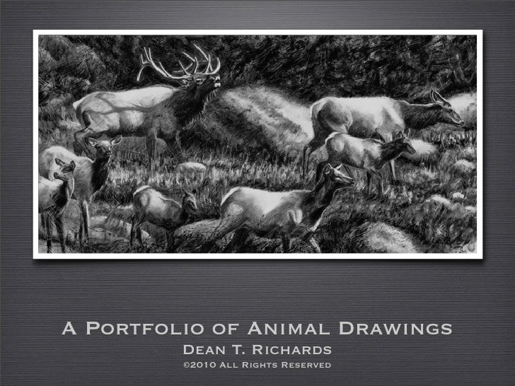 A Portfolio of Animal Drawings          Dean T. Richards          ©2010 All Rights Reserved