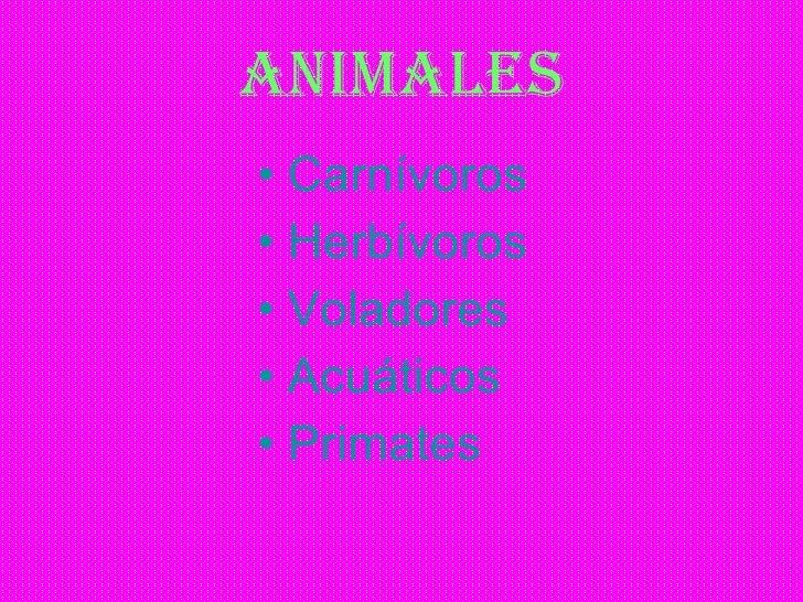 ANIMALES <ul><li>Carnívoros </li></ul><ul><li>Herbívoros </li></ul><ul><li>Voladores </li></ul><ul><li>Acuáticos   </li></...