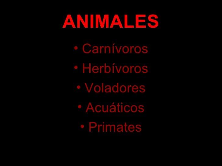 Animales_alvaro