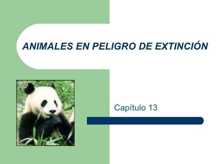 ANIMALES EN PELIGRO DE EXTINCIÓN Capítulo 13