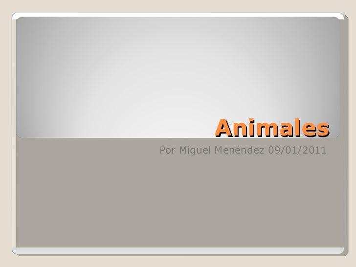 Animales Por Miguel Menéndez 09/01/2011