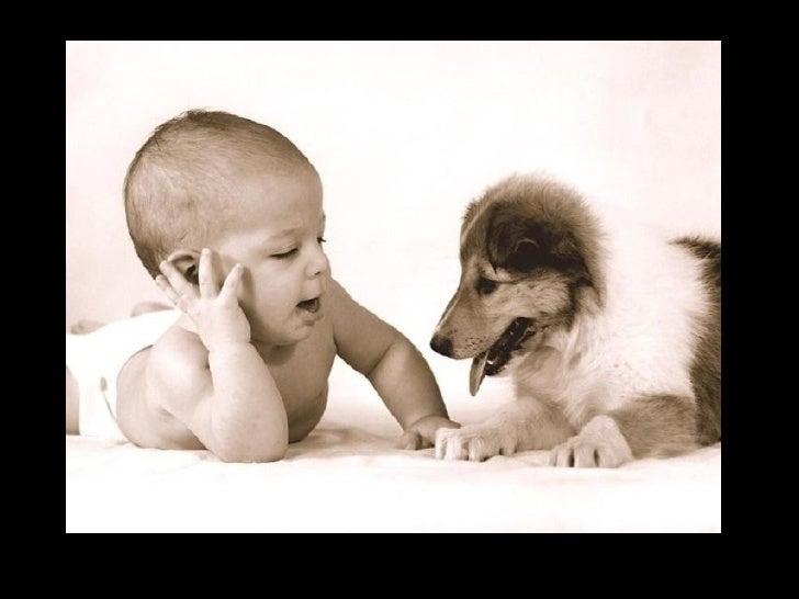 Bienvenidos al nuevo foro de apoyo a Noe #258 / 20.05.15 ~ 23.05.15 - Página 21 Humanos-y-animales-6-728