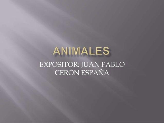 EXPOSITOR: JUAN PABLO   CERÒN ESPAÑA