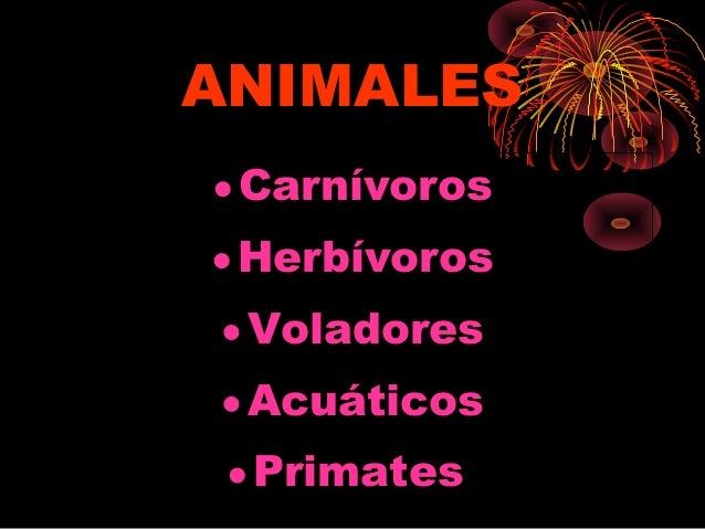 ANIMALES•Carnívoros•Herbívoros•Voladores•Acuáticos•Primates