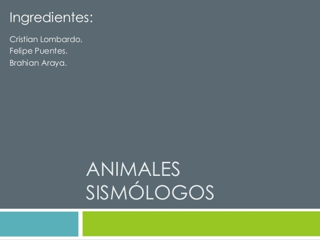 Ingredientes:  ANIMALES  SISMÓLOGOS  Cristian Lombardo.  Felipe Puentes.  Brahian Araya.