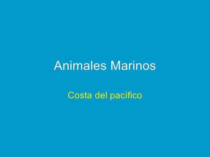 Animales Marinos Costa del pacífico