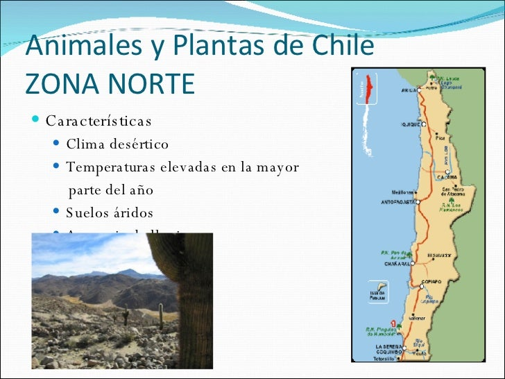 Chile zona norte centro y sur images for Marmoles y granitos zona norte