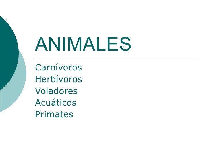 ANIMALES Carnívoros Herbívoros   Voladores Acuáticos Primates