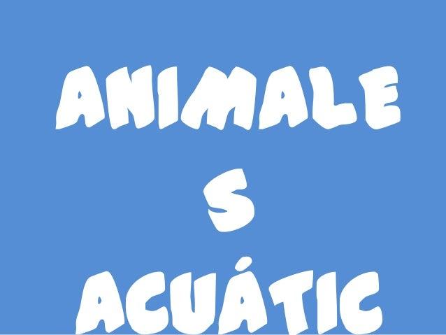 ANIMALE   SACUÁTIC