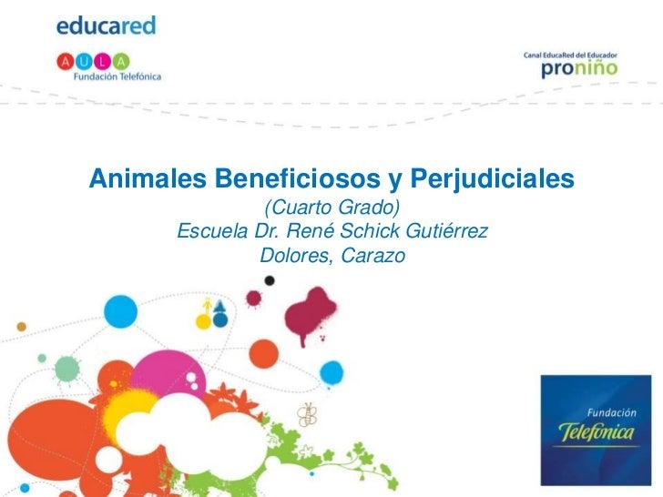 Animales Beneficiosos Y Perjudiciales