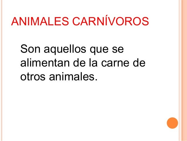 Son aquellos que se alimentan de la carne de otros animales. ANIMALES CARNÍVOROS