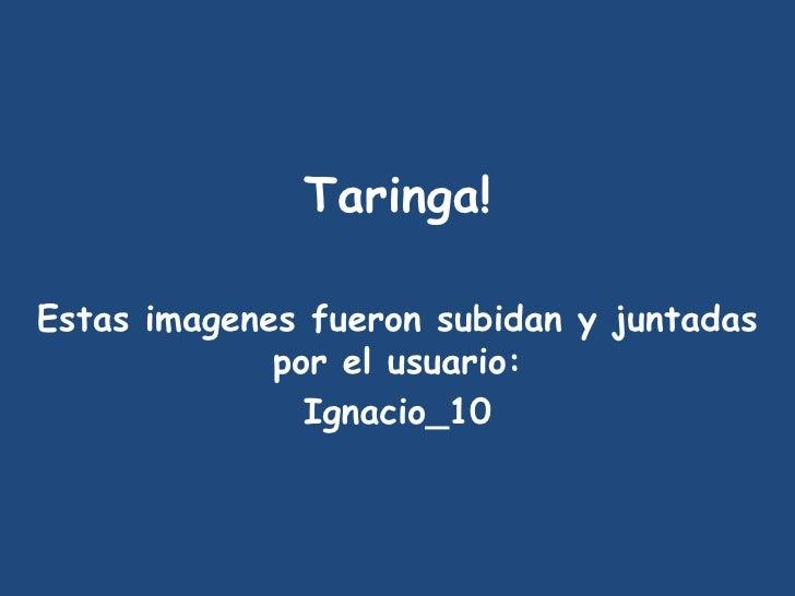 Taringa! Estas imagenes fueron subidan y juntadas por el usuario: Ignacio_10