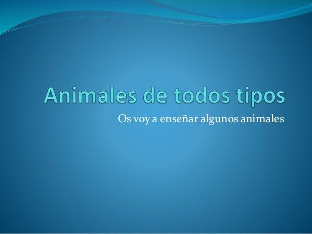 Os voy a enseñar algunos animales
