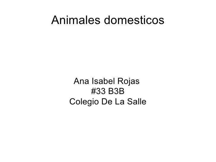 Animales domesticos Ana Isabel Rojas  #33 B3B Colegio De La Salle
