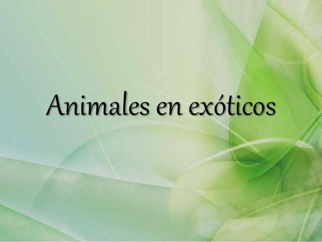 Animales en exóticos