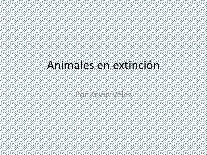 Animales en extinción     Por Kevin Vélez
