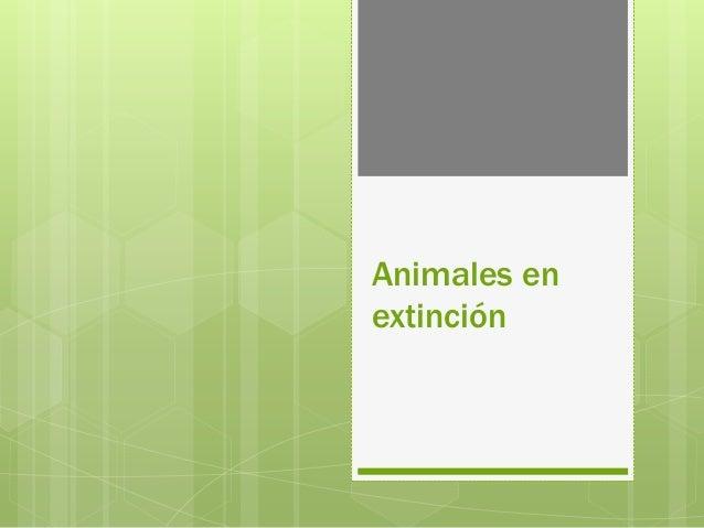 Animales en extinción