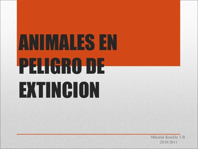 ANIMALES EN PELIGRO DE EXTINCION Mikuláš Kanďár 3.B 2010/2011